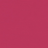 My Colors Cardstock Canvas Pimento