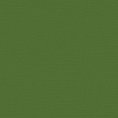 My Colors Cardstock Canvas Parrot Green