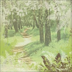 Scrapbooking Papier Einseitig Woodland Path Camping Paper