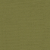 My Colors Cardstock Canvas Grasshopper Green