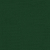 My Colors Cardstock Canvas Evergreen