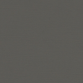 My Colors Cardstock Canvas Cloak Grey